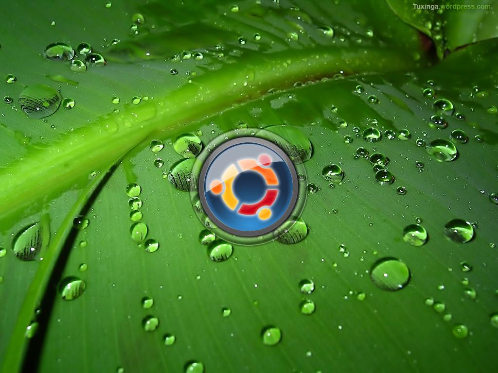 Ubuntu 11.04 Características